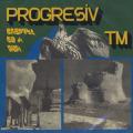 PROGRESIV TM/Dreptul De A Visa (1975/1st) (プログレッシヴ TM/Romania)
