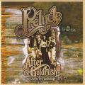 PRELUDE/Aftet The Goldrush: The Dawn/Pye Anthology 1973-77(Used 2CD) (1973-77/Comp.) (プレリュード/UK)