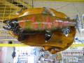 魚の剥製 サクラマス 左頭 53cm