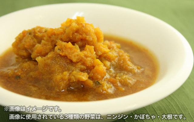 ビッグウッド 天然サーモンスープの有機野菜入りグルメシチュー
