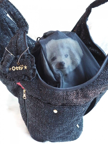 オッティ Otty ×ROOTOTE(ルートート)コラボ・キャリーバッグ