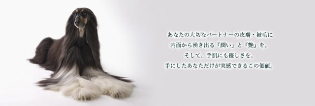 LexyPets(レクシーペッツ)ブラッシングミストClearMoisture(200ml)【ペット犬用消臭被毛ブラッシングスプレーヘアケア】