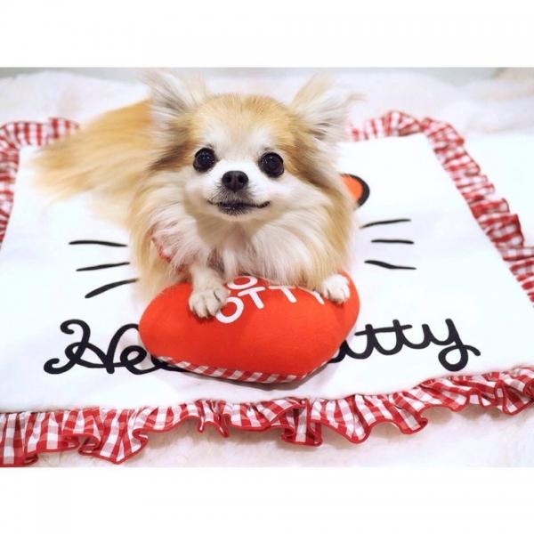オッティ Otty ×HELLO KITTY☆フェイス・アゴ乗せ枕付きカフェマット