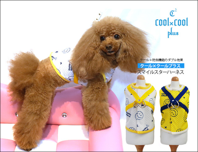 Coo Couture (クークチュール) クール×クールプラス スマイルスターハーネス