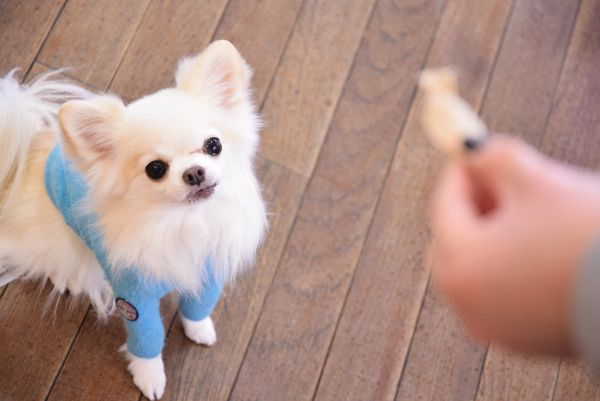 PURSUITOFLOVE(パシュートオブラブ)鎗屋堂キッチン ささみ15g【犬ペットおやつジャーキー肉栄養プラストッピング】