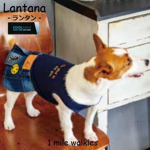 ワンマイルウォーキーズ 1 mile walkies ランタナ Lantana