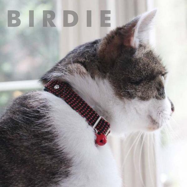 バーディ BIRDIE  CATメタチューブカラー