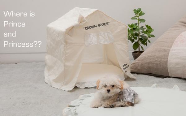 louisdog (ルイスドッグ) Peekaboo/Ecru