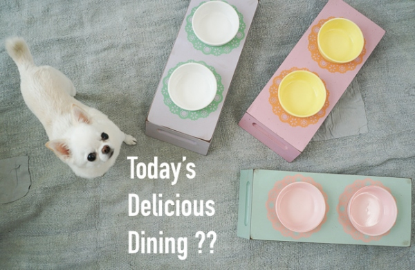 ルイスドッグ louisdog Delicious Dining