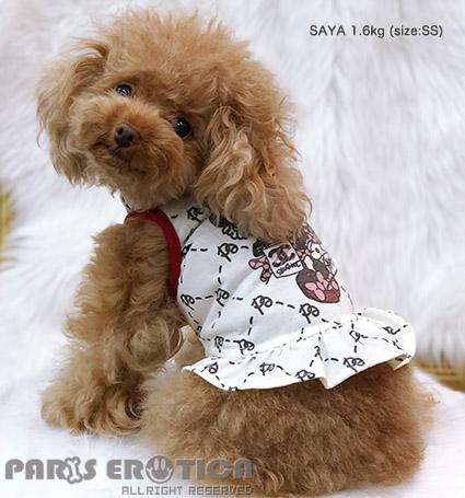 PARIERO(パリエロ)StylishGirlCoolmotionFrilledTank[先行予約]【小型犬犬服ウエアトップスタンクセレブ】