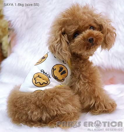 PARIERO(パリエロ)SmileCoolmotionTank[先行予約]【小型犬犬服ウエアトップスタンクセレブ】