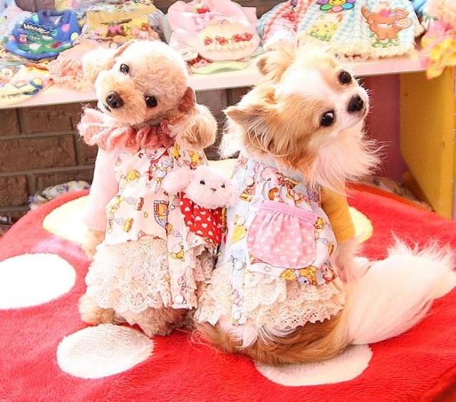 J&Kアニマルズ J&K animals ☆レトロ ワンピース☆
