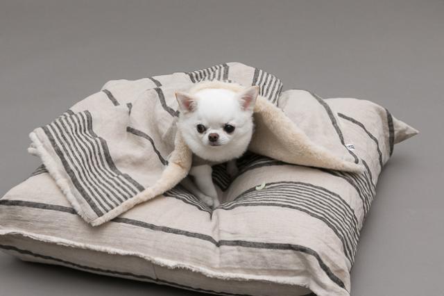 ルイスドッグ louisdog Stripes Linen Blanket