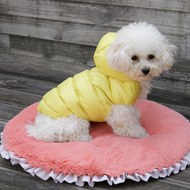ルイスドッグ louisdog Applique Organic Peekaboo/Oxford Frame Cover