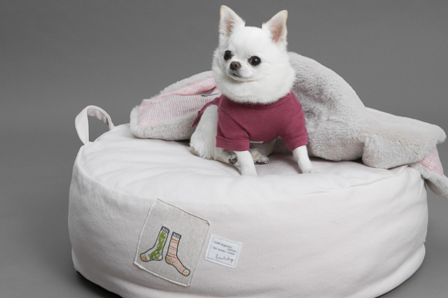 ルイスドッグ louisdog Applique Organic Cushion/Oxford