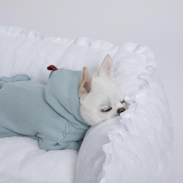 ルイスドッグ louisdog The Furry Boom