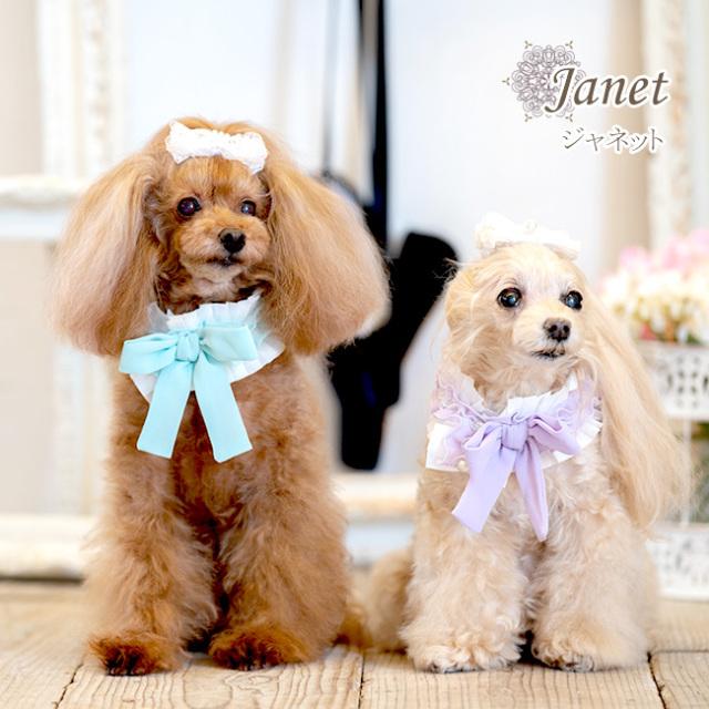 グラマーイズム Glamourism ジャネット Janet