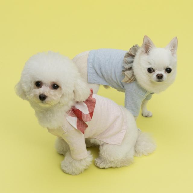 ルイスドッグ louisdog Good Cardigan Couture