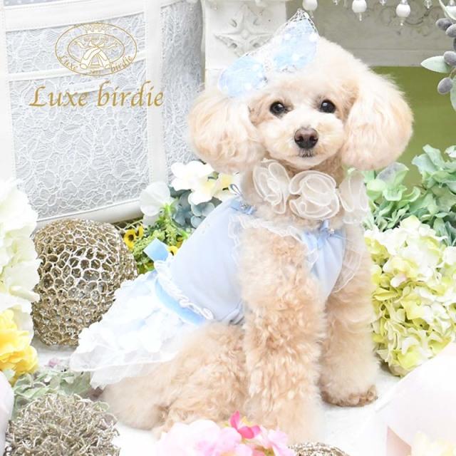 リュクスバーディ Luxe birdie ラフェットワンピース BLUE