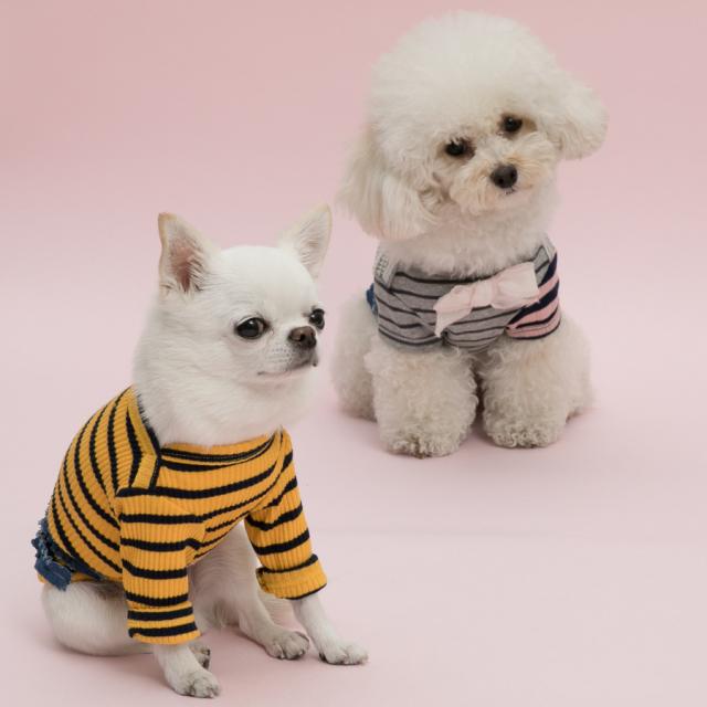 ルイスドッグ louisdog Sweet Frills Couture