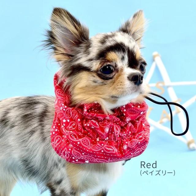 ディーズチャット D's CHAT 内ポケット付スヌード【小型犬 ウエア マフラー スカーフ 首巻き スヌード】