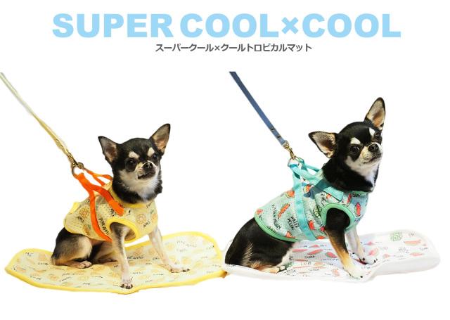 クークチュール Coo Couture スーパークール×クール トロピカルマット S