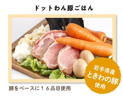 ドットわん dot wan ごはん4種セット+ドットわんカツオ薫り角ステーキ