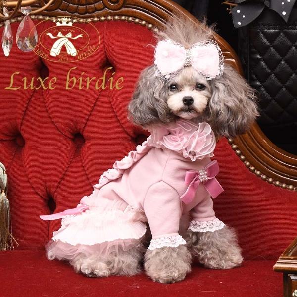 リュクスバーディ Luxe birdie セレニティチュチュドレス PINK