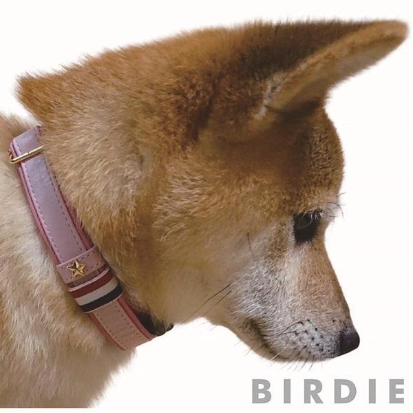 バーディ BIRDIE スターソフトレザーIDカラー