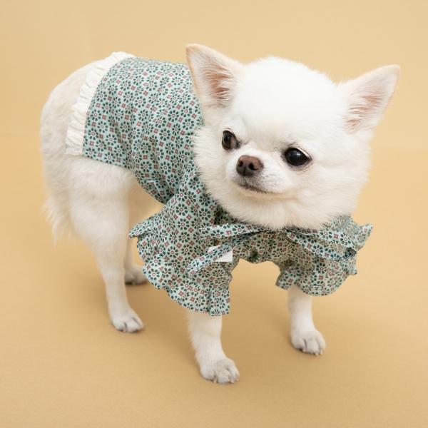 ルイスドッグ louisdog Misty Lace Blouse