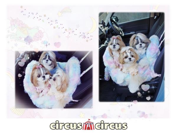 サーカスサーカス circus circus Unicorn Drive Easy Carry(CCB-0060)