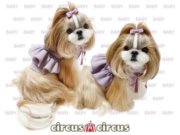 サーカスサーカス circus circus GIRLS BABY PK【裏起毛】(CCW-0192)