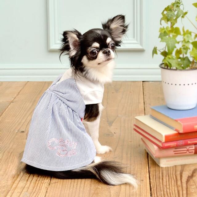 クレイジーブー CRAZYBOO レイヤードリボンワンピ【小型犬 犬服 ウエア ワンピース ドレス カジュアル】