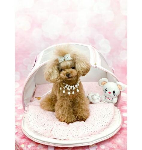 フォーペッツオンリー for pets only ARIABAG PINK (PE2021-B2) MINI