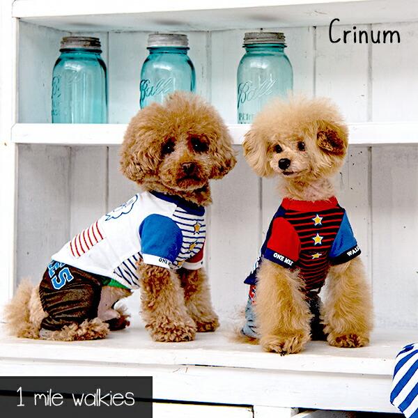 ワンマイルウォーキーズ 1 mile walkies クリナム Crinum Stitching T-shirt