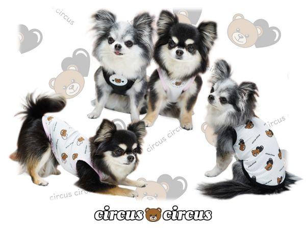 サーカスサーカス circus circus Heart Bear メッシュタンク【涼感加工】(CCW-0201)