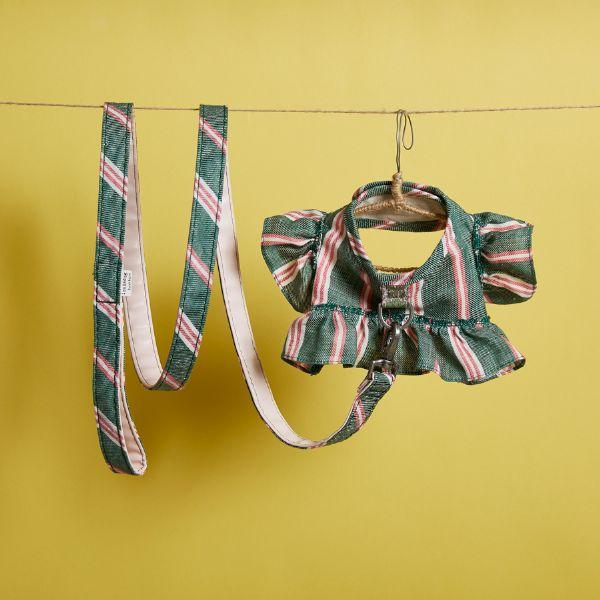 ルイスドッグ louisdog Greeny Harness Set