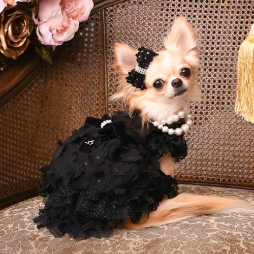 リュクスバーディ Luxe birdie デビュタントドレス BLACK
