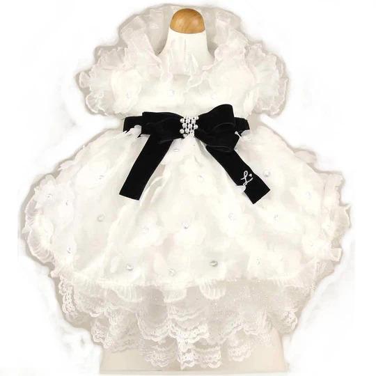 リュクスバーディ Luxe birdie デビュタントドレス WHITE×BLACK