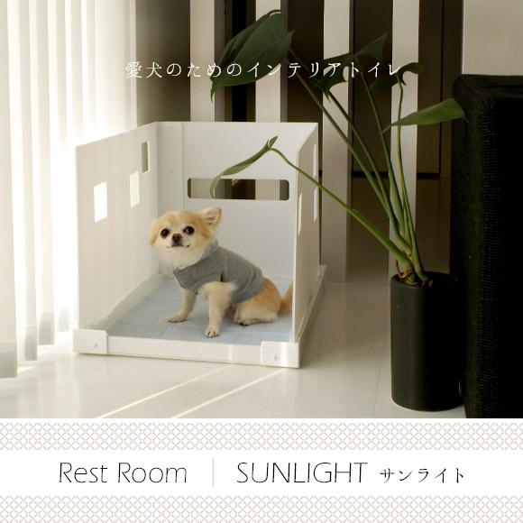 アイドッグ iDog Rest Room SUNLIGHT サンライト