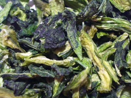 プライムケイズ 乾燥野菜 小松菜 40g