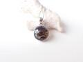 SS0040 セリコ隕石(Sericho Meteorite) ペンダントトップ ◇ネコポス対応可◇