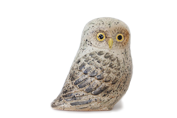 Owl / フクロウ