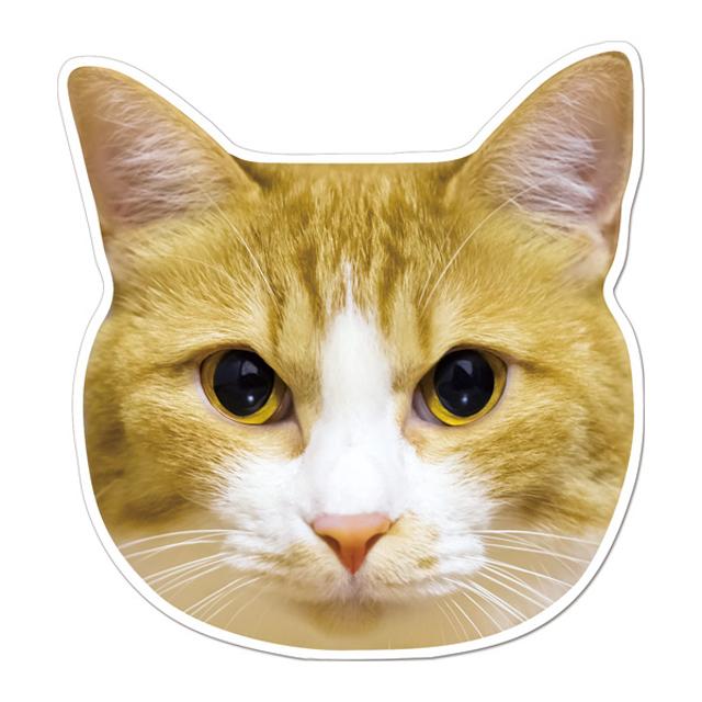 77茶白猫マグネット1
