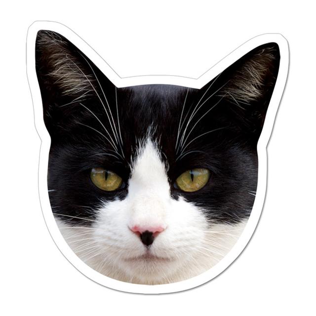 77黒白猫マグネット1