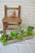 多肉植物寄せ植え アートアルミBOX(要予約商品)
