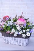 カゴ長方形型 季節の寄せ植えギャザリング(要予約商品)