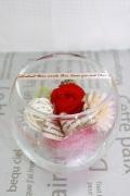グラスローズ 赤薔薇プリザ
