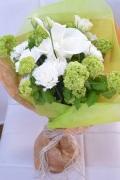 カラー カーネーション 白緑 さわやか花束