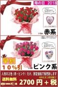【全国送料無料】早割 赤・ピンクカーネーション 鉢植え 限定商品